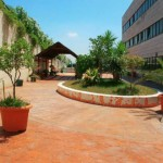 Patio perteneciente al Centro Asisttel situado en el Aljarafe